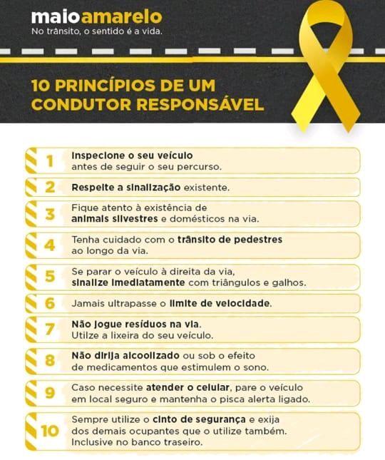 10 Princípios de Um Condutor Responsável